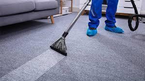 carpet bio cleaning